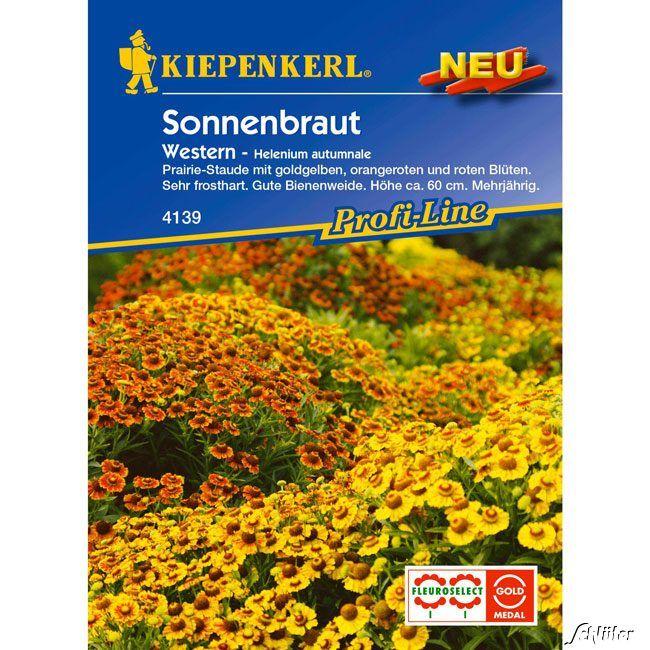 Garten-Schlueter.de: Sonnenbraut Western