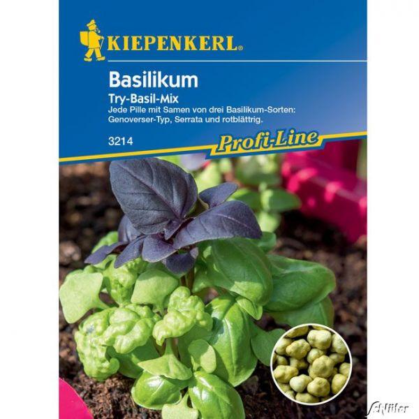 Basilikum Simply Herbs 'Try-Basil Mix' Ocimum basilicum Bild