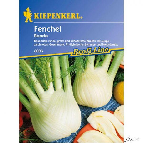 Knollenfenchel 'Rondo' Foeniculum vulgare Bild