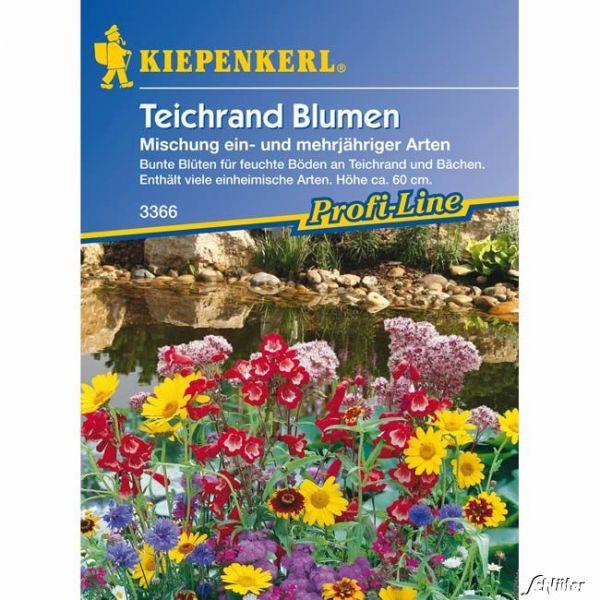 Teichrand-Blumenmischung Bild
