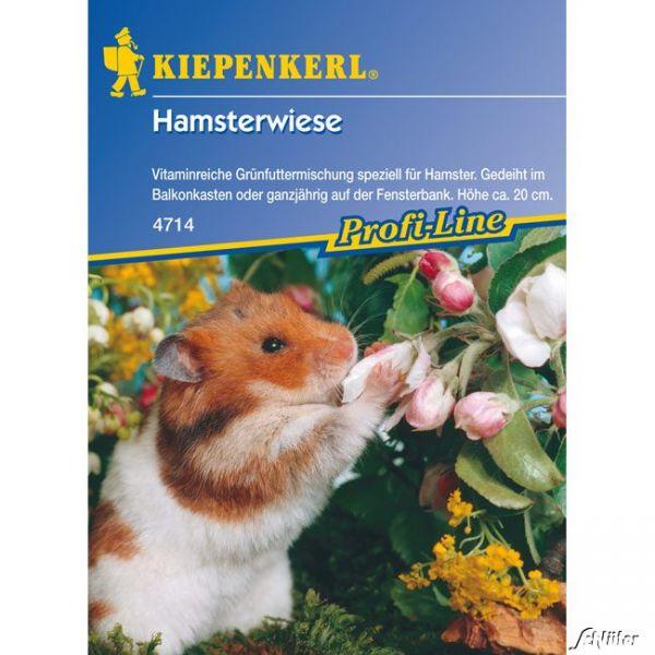 Hamsterwiese Bild