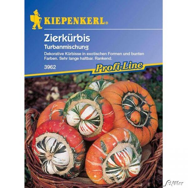 Zierkürbis Turbanmischung Cucurbita pepo Bild
