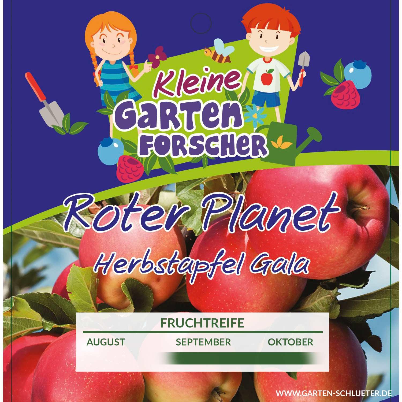 Berühmt Apfel 'Roter Planet' - Kleine Gartenforscher - Malus domestica @JU_59