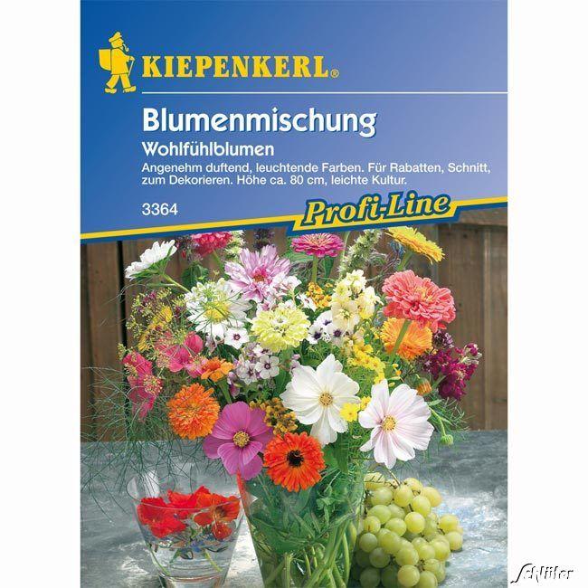 Wohlfühlblumen-Mischung