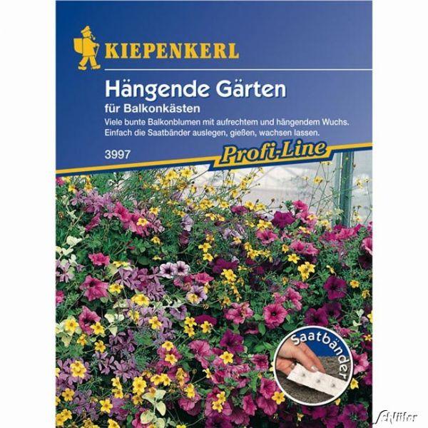 Hängende Gärten für Balkonkästen Bild