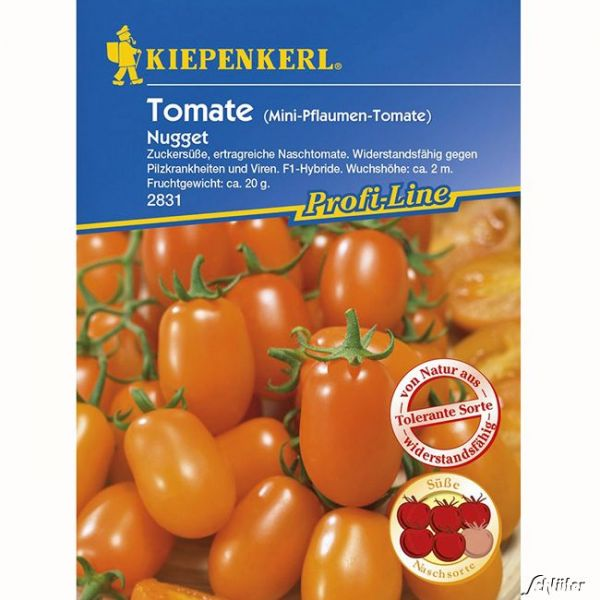 Tomate 'Nugget' - Mini-Pflaumen-Tomate Solanum lycopersicum Bild