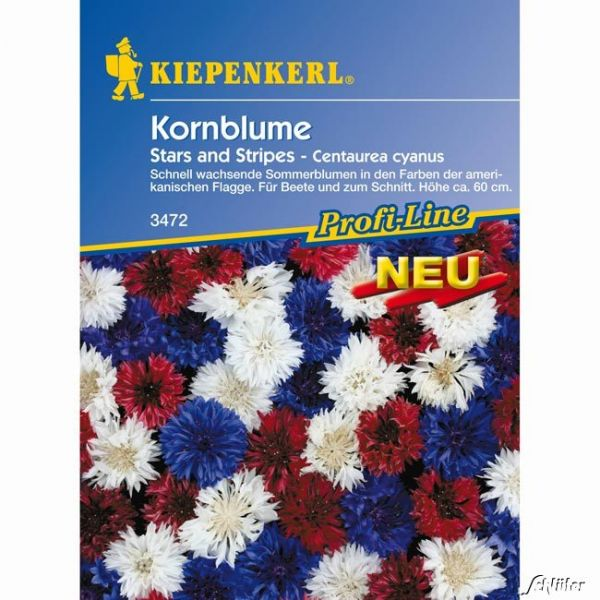 Kornblumen 'Stars and Stripes' Centaurea cyanus Bild