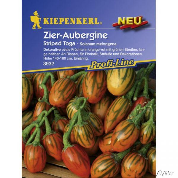 Zier-Aubergine 'Striped Toga' Solanum melongena Bild