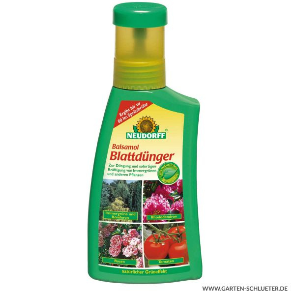 Neudorff Balsamol Blattdünger - 250 ml (ehemals Koniferen- Balsam Blattdünger) Bild