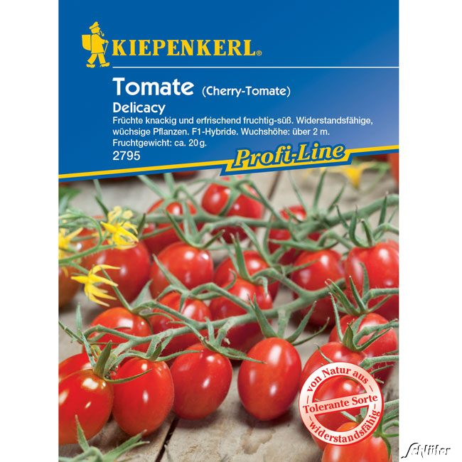 dattel tomate 39 delicacy 39 f1 solanum lycopersicum 39 delicacy 39 tomaten garten schl ter. Black Bedroom Furniture Sets. Home Design Ideas