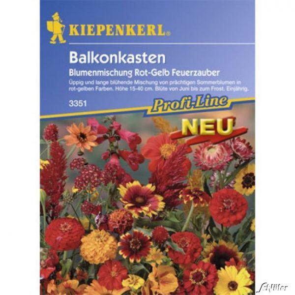Balkonkasten-Blumenmischung 'Feuerzauber' Bild