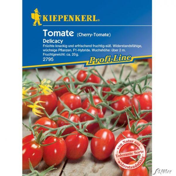 Dattel-Tomate 'Delicacy' F1 Solanum lycopersicum 'Delicacy' Bild