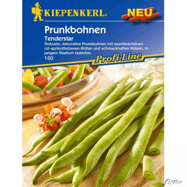 Prunkbohne 'Tenderstar' Phaseolus coccineus Bild