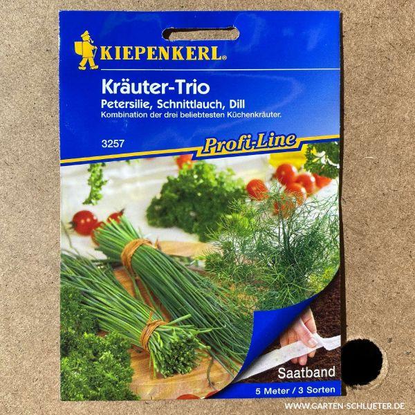 Kräuter-Trio Schnittlauch 'Staro', Petersilie 'Darki' und Dill 'Tetra'  Bild
