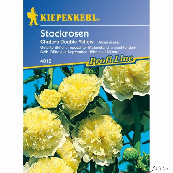 Stockrosen 'Chaters Double Yellow' Alcea rosea Bild