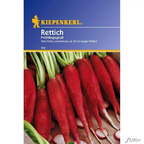 Rettich 'Ostergruß 2/ Frühlingsgruß' Raphanus sativus Bild