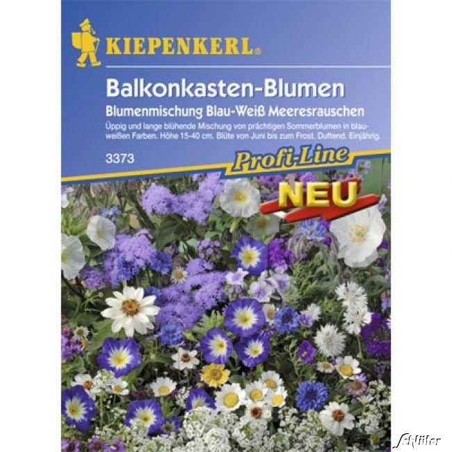 Balkonkasten-Blumenmischung 'Meeresrauschen'
