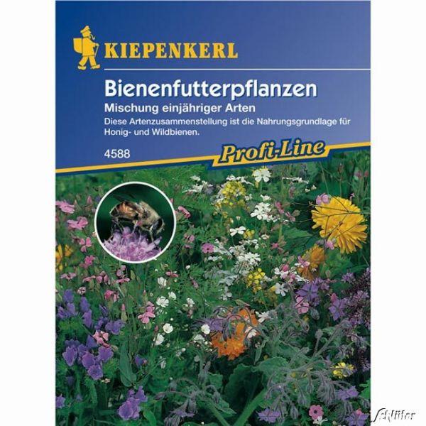 Bienenfutterpflanzen 'Mischung einjähriger Arten' Bild