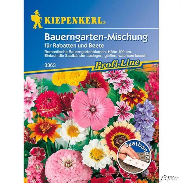 Blumenmischung 'Bauerngarten' - Saatband Daucus carota ssp. sativus Bild