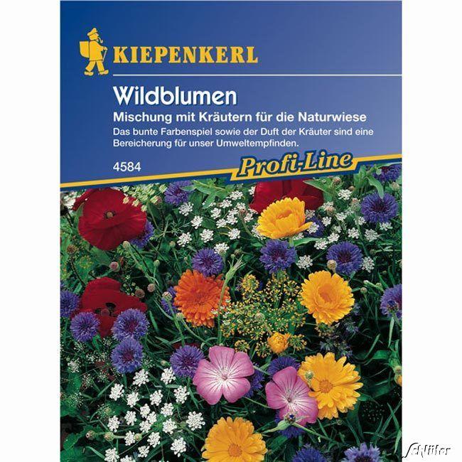Wildblumen mit Kräutern