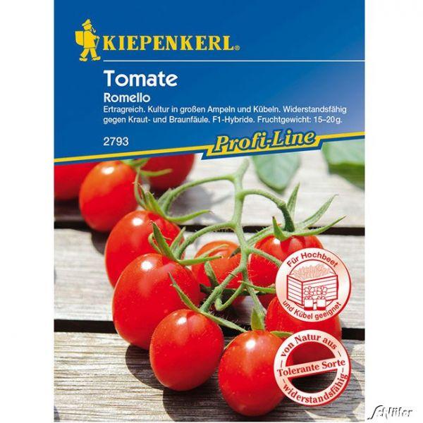 Mini-Pflaumen-Tomate 'Romello' Solanum lycopersicum Bild