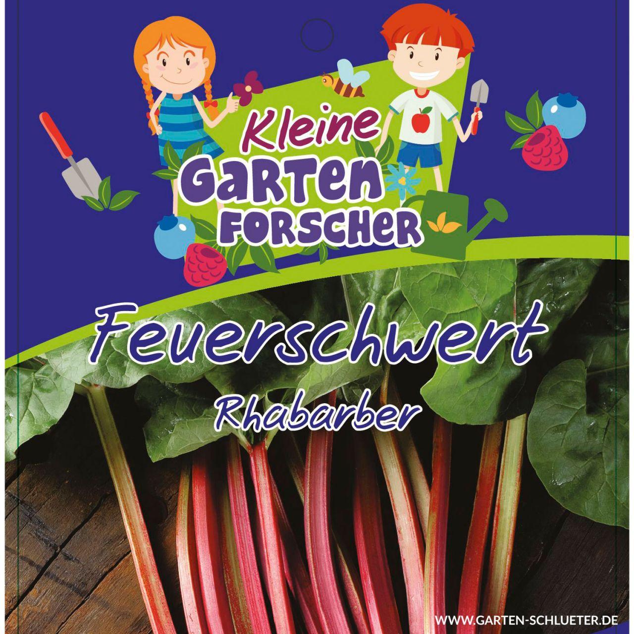 Rhabarber 'Feuerschwert' - Kleine Gartenforscher