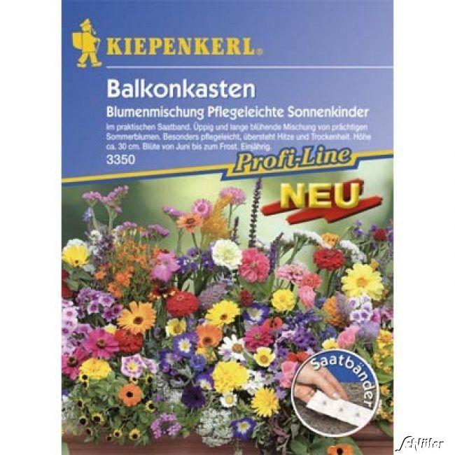 Balkonkasten-Blumenmischung 'Pflegeleichte Sonnenkinder'