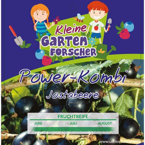 Jostabeere 'Power-Kombi' Kleine Gartenforscher Ribes x nidigrolaria Bild