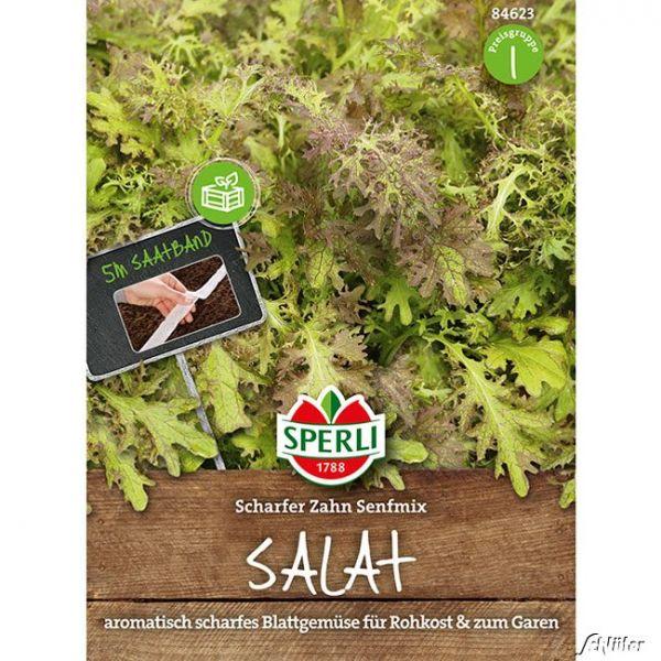 Sperlis Blattsenf 'Scharfer Zahn-Mix' Brassica juncea 'Scharfer Senf Mix' Bild