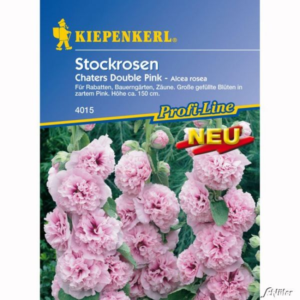 Stockrosen 'Chaters Double Pink' Alcea rosea Bild