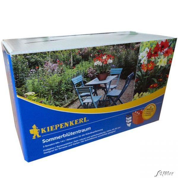 Gartenamaryllis Farbenmischung  Bild