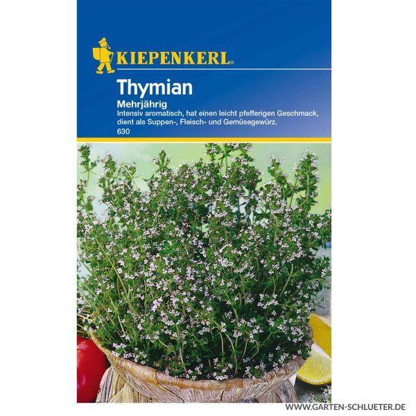 Thymian Mehrjährig Thymus vulgaris Bild