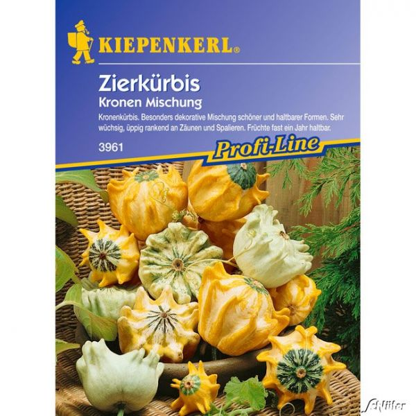 Zierkürbis 'Skurrile Kronenmischung' Cucurbita pepo Bild