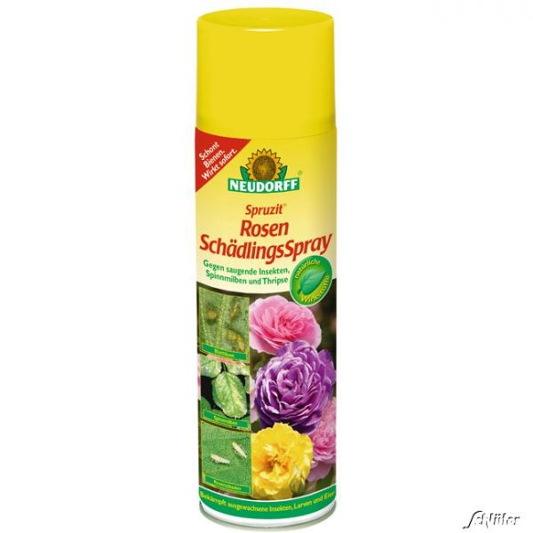 Spruzit Rosenschädlingsspray -anwendungsfertiges Insektizid  Bild