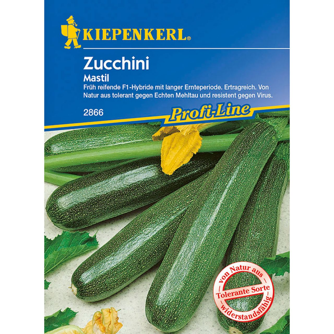Zucchini 'Mastil'