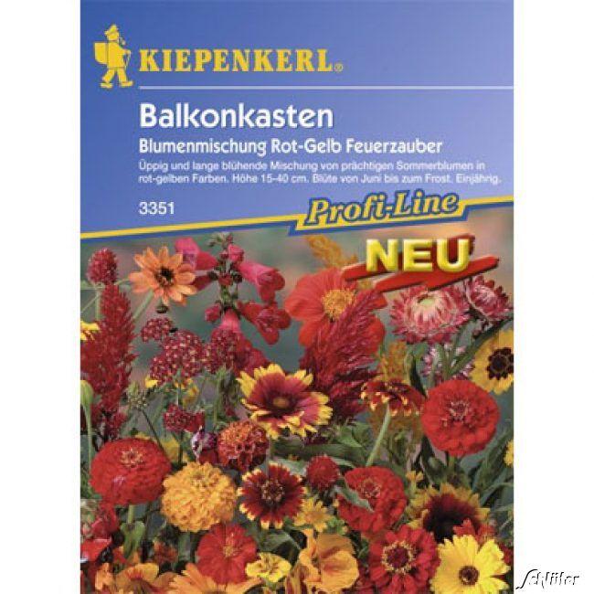Balkonkasten-Blumenmischung 'Feuerzauber'