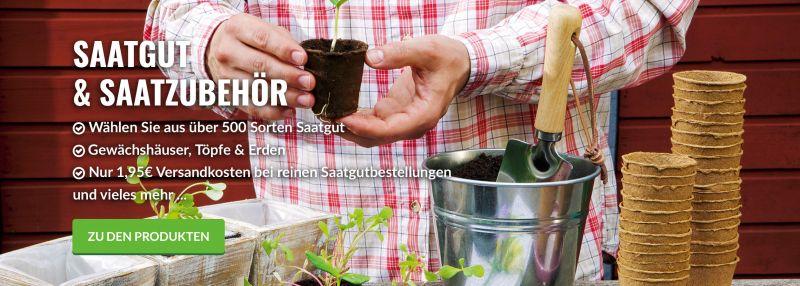 Gartenbau Henstedt Ulzburg pflanzenversand gartenpflanzen kaufen garten schlüter