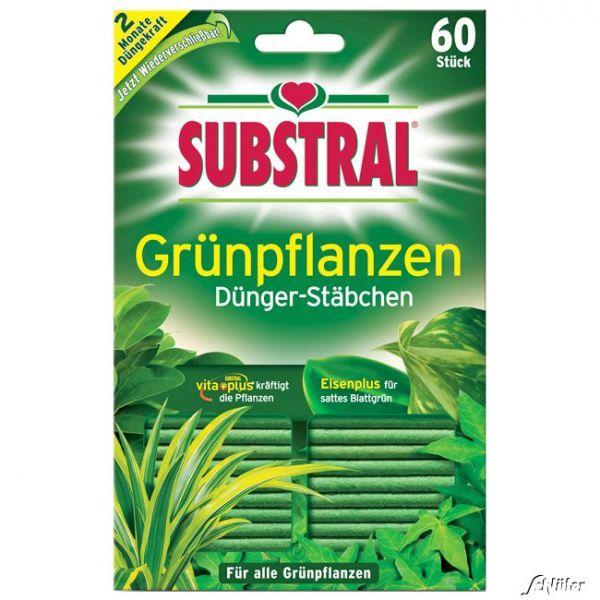 Substral® Dünger-Stäbchen für Grünpflanzen - 60 Stück Bild