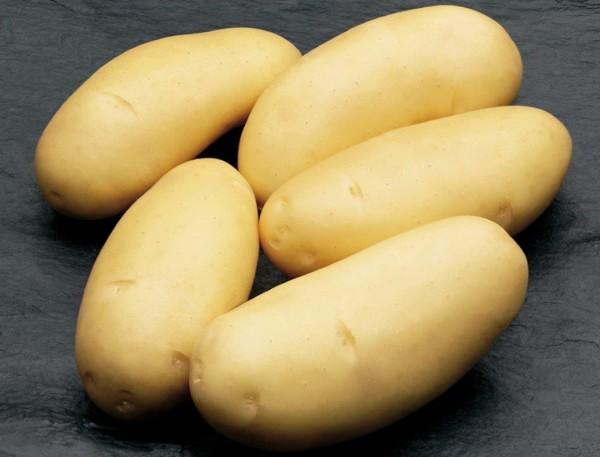 Kartoffeln_Fru-hkartoffeln