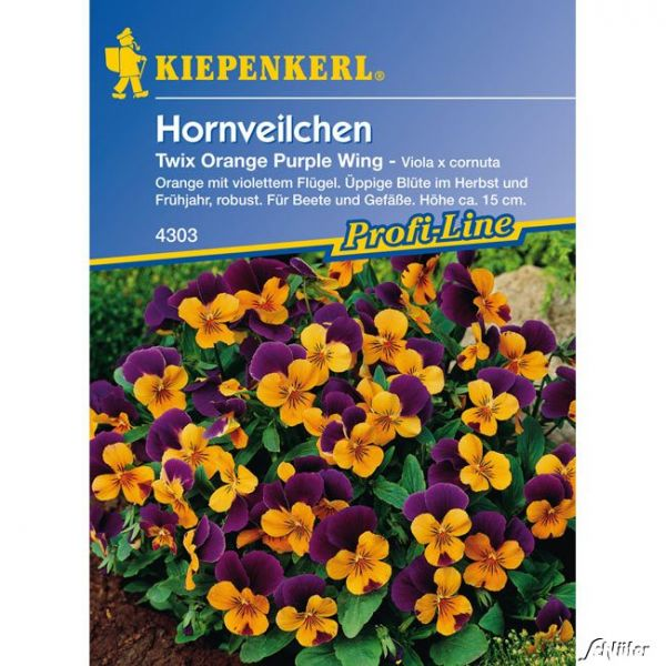 Hornveilchen 'Twix Orange Purple Wing' Viola x cornuta 'Twix Orange Purple Wing' Bild