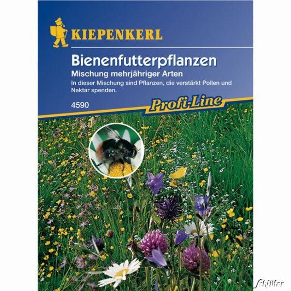 Bienenfutterpflanzen 'Mischung mehrjähriger Arten' Bild